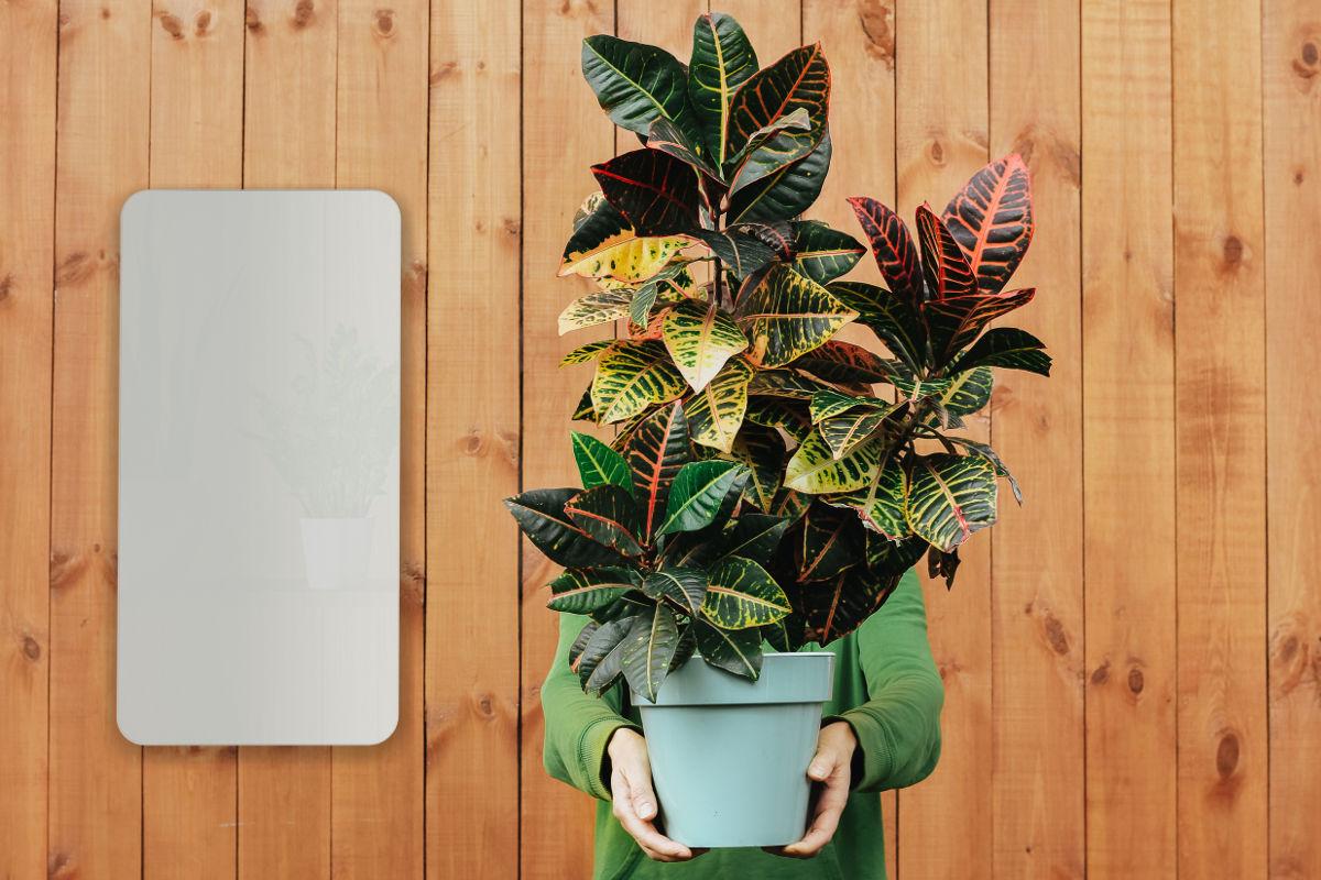 Vantaggi dei pannelli di riscaldamento ad infrarossi - Sostenibilità